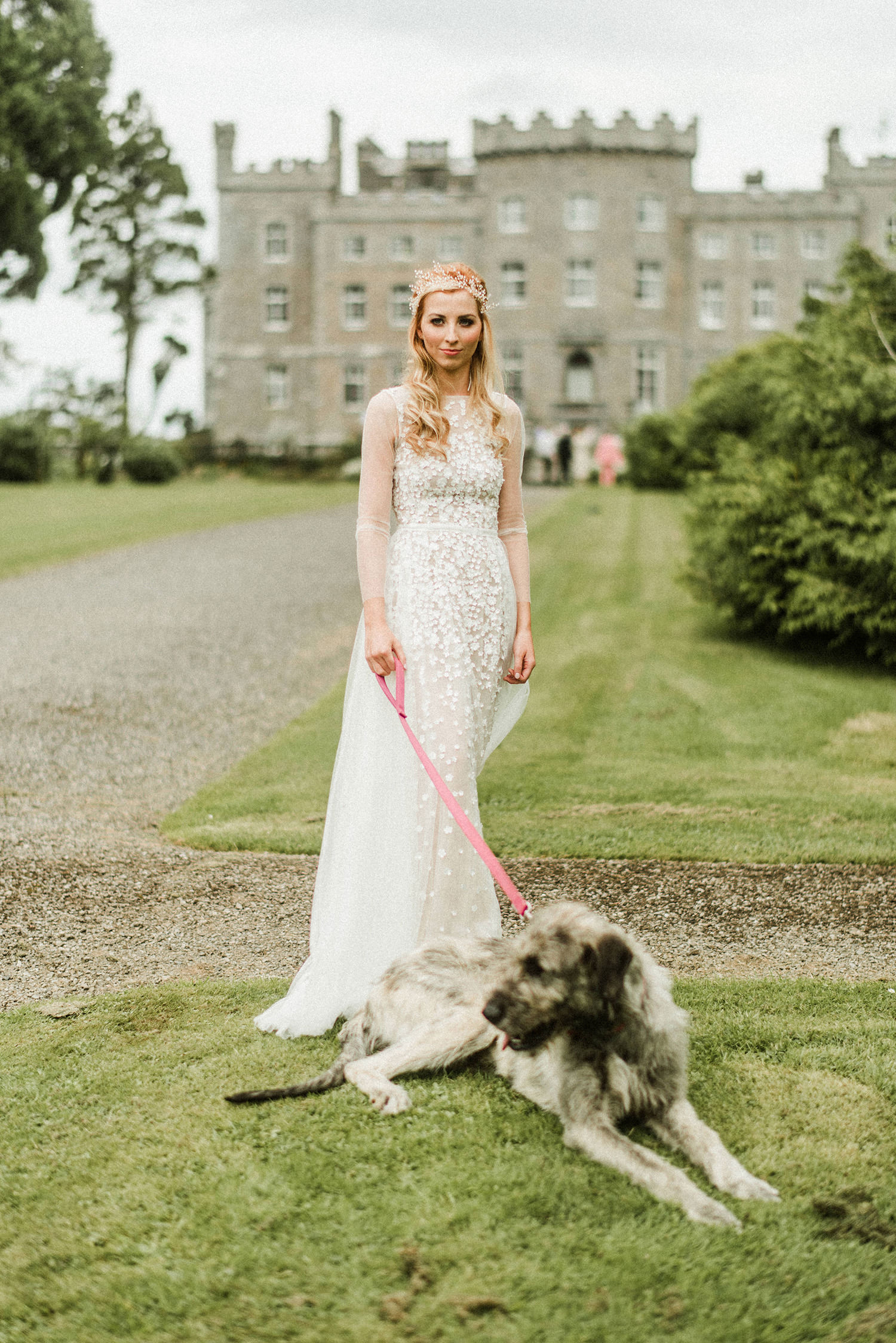 Bride with irish wolfhound in markree castle